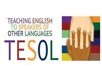 TESOL & CELTA Qualified Private English Tutor