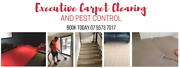 CARPET CLEANING SPECIAL Southport Gold Coast City Preview