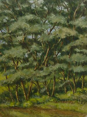 Expressionismus Gem�lde Waldlandschaft Expressiver Realismus