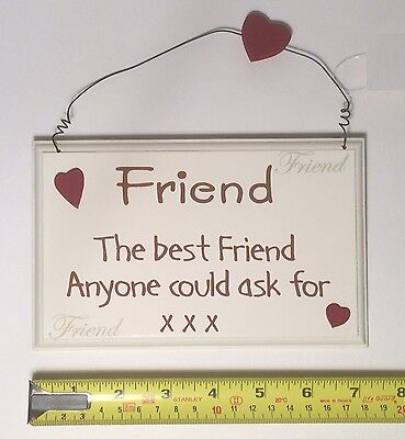The Best Friend Wall Plaque Friendship Birthday Gift Ideas for