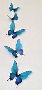 5 Vivid Teal Flying 3D Butterflies Wall Mounted Butterfly Art Home Accessories