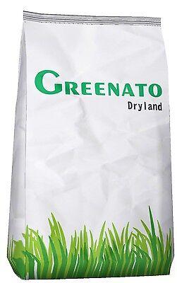 Rasensamen Dryland Dürreresistenter Rasen Grassamen Saatgut Rasensaat Grassaat