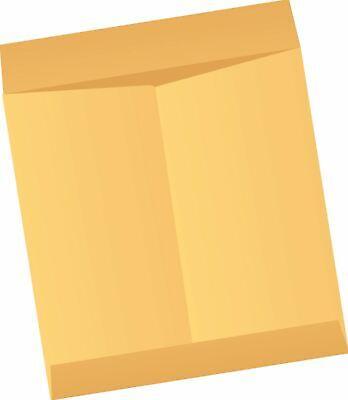 Brown Kraft Envelopes Jumbo Sizes 250ctn Large Flat Item Organizer Storage