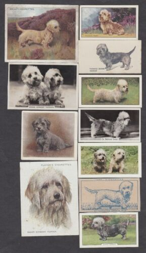 18 Different Vintage DANDIE DINMONT TERRIER Tobacco/Cigarette Dog Cards Lot