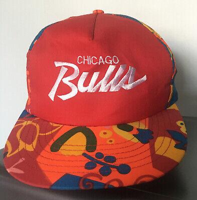 Vintage 90s Chicago Bulls Directories America Script Retro SnapBack Hat Cap rare