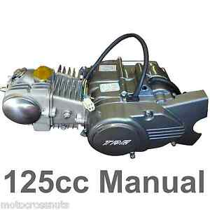 125cc KICK START ENGINE Manual 4 speed, 4 stroke motor, Pit Dirt bike Thumpstar