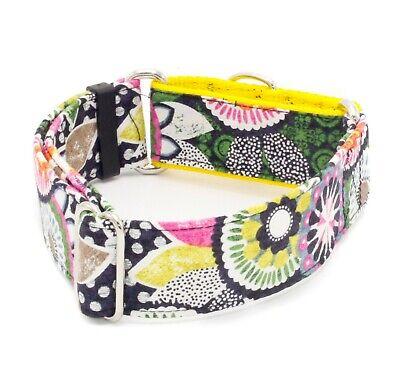 Flower Power 70's Style Dog Collar 5/8