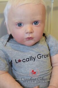~Reborn Dolls Available  from Reputable Reborn Artist~