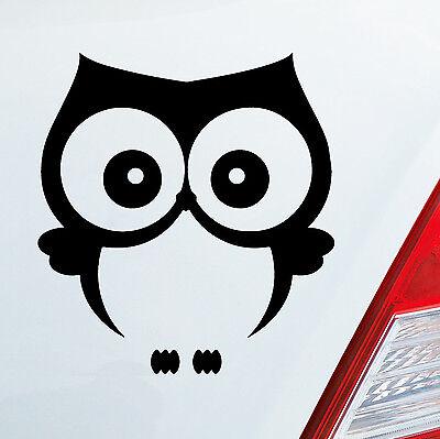 Auto Aufkleber EULE Owl Vogel Bird UHU süß Tier Musik Sticker DUB OEM JDM 721
