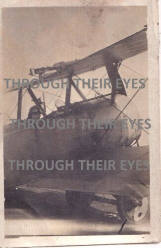 Original WW1 photo Royal Flying Corps Pilot in Sopwith Pup