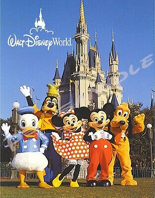 Disney World Characters Mickey Minnie Donald Pluto Goofy Souvenir Fridge Magnet - Mickey Refrigerator Magnet