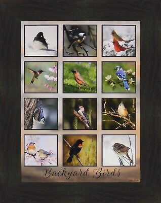 BACKYARD BIRDS Lori Deiter 16x20 Collage Cardinals Chickadee FRAMED ART PICTURE