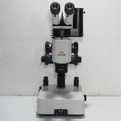 Leica Wild M10 Stereo Zoom Microscope W Photo Tube Plan Apo 0.63x Light Stand