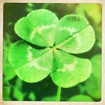 Luckyclothes