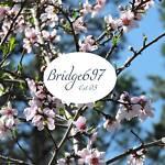 bridge697
