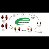 EPRO PEST CONTROL SERVICES CALL 416-834-3789