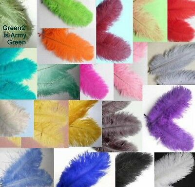 10 OSTRICH feathers 6-8