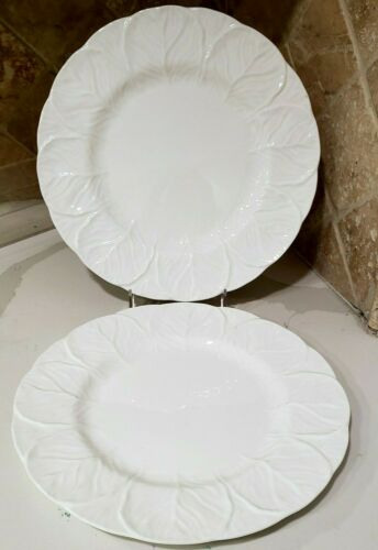 2 Coalport Countryware dinner plates Wedgwood Brand New
