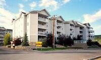 Ft McMurray2 Bed 2 Bath fully furnished, equipped condo for rent