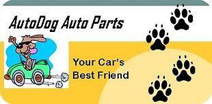 Autodog Auto Parts