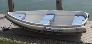 Walker Bay Dingy RID 310,  sailing kit and unregistered trailer