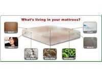 What is lurking in your Mattresses?