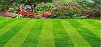 Mowing, Sodding, New and Old Lawns.