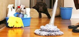 Count on Us for your Cleaning and Removal Services
