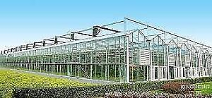 Looking to Lease Greenhouses or Land