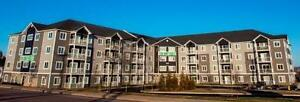 1 Bedroom $795 - $925 - 747 Coverdale & 1212 Mountain Road