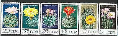 CACTUS - CACTUS FLOWERS D.D.R. 1974