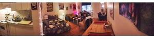 McGill Ghetto VERY SPACIOUS Studio for lease transfer JULY 1st