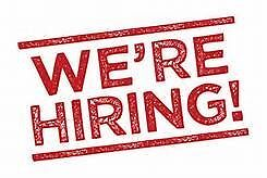 EXPERIENCE FRYER required for local fish and chip catering (CARRICKFERGUS)