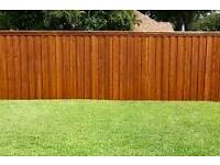 Fence And Shed Spraying Service