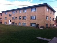 $995 Great Location Great Price  2 Bedroom Apt 10950-105 St