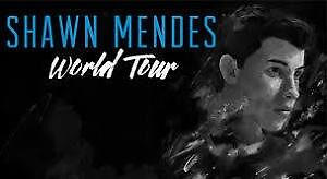Shawn mendes Sunday August 21 SEc 121 row 23