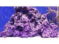 Fish tank rock