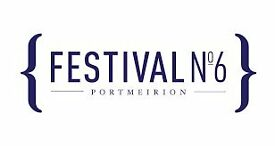 Volunteer at Festival No 6 2017!