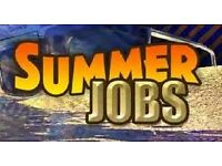 Shelter street fundraiser - great summer job - £8.50-£13/hr