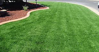 """PAUL'S LAWN CARE   ....  """"FREE LAWN ROLLING or LAWN AERATION"""".**"""