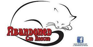 Yard sale - fundraiser for Abandoned Cat Rescue