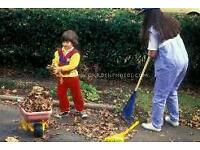 Gardens cleaning service