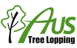 Budget Tree Services - 30% Off Special - Free Quote Epping Ryde Area Preview