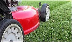 LAWN MOWING BUSINESS FOR SALE - WESTERN SYDNEY Greystanes Parramatta Area Preview