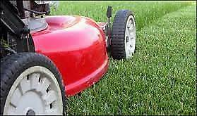 LAWN MOWING BUSINESS FOR SALE - GREYSTANES AREA Greystanes Parramatta Area Preview