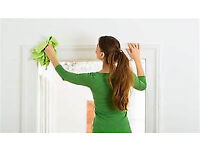 Professional Cleaning Services for the Edinburgh Area and small maintenance jobs