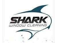 Shark Window Cleaning Special Offers
