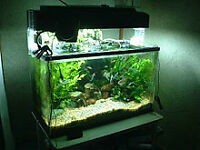 40 Liter aquarium wanted - for terrarium