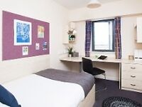 *STUDENT ACCOMMODATION* 0.7 miles from city centre, Flat to rent from January