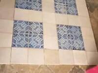 Ceramic tiler looking for work